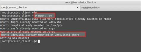 """Centralized Secure Storage (iSCSI) - """"Initiator Client"""