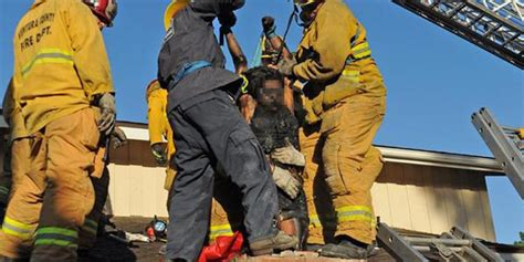 Spurned Woman Rescued From Chimney After Trying To Enter